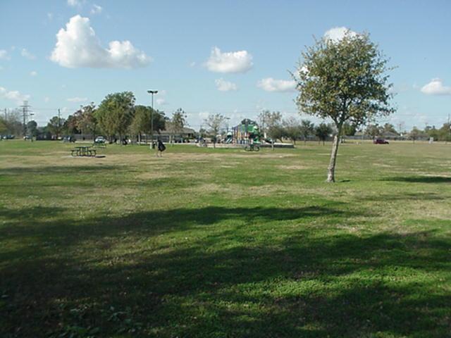 Green field pic